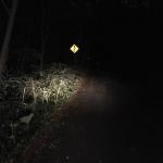 倶多楽湖観光道路