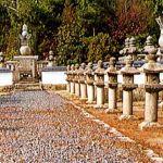 今治藩主の墓