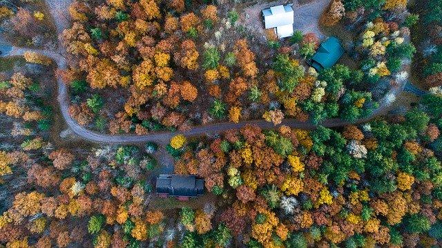 秋の森を上空から撮影