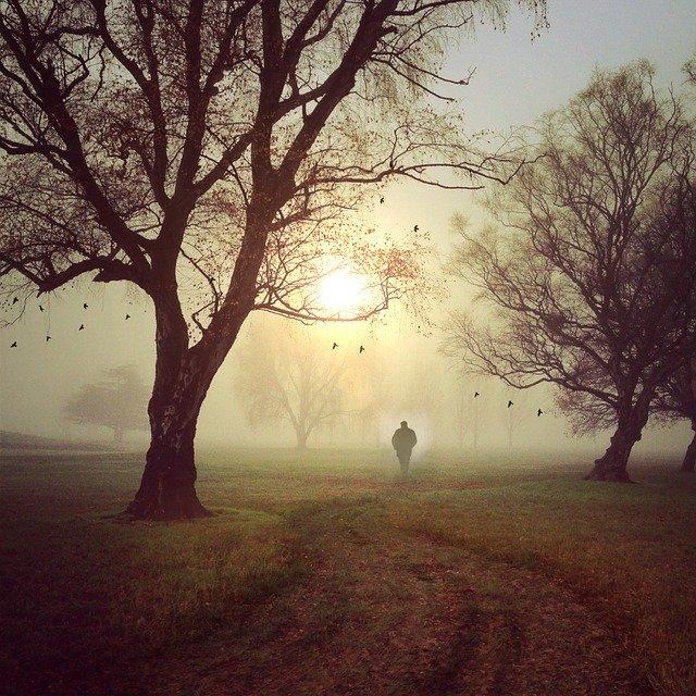 霧の向こうを歩く人影