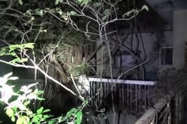 イノチャン山荘